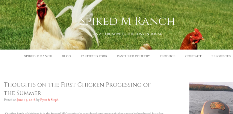 Spiked M Ranch: Thoughts on the First Chicken Processing of the summer